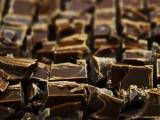 Stevia Schokolade von Cavalier